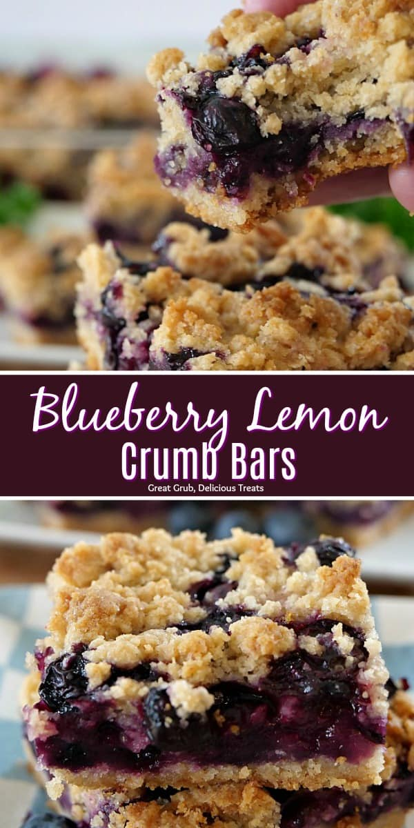 Blueberry Lemon Crumb Bars are super delicious, loaded with fresh blueberries and is a perfect summer dessert.