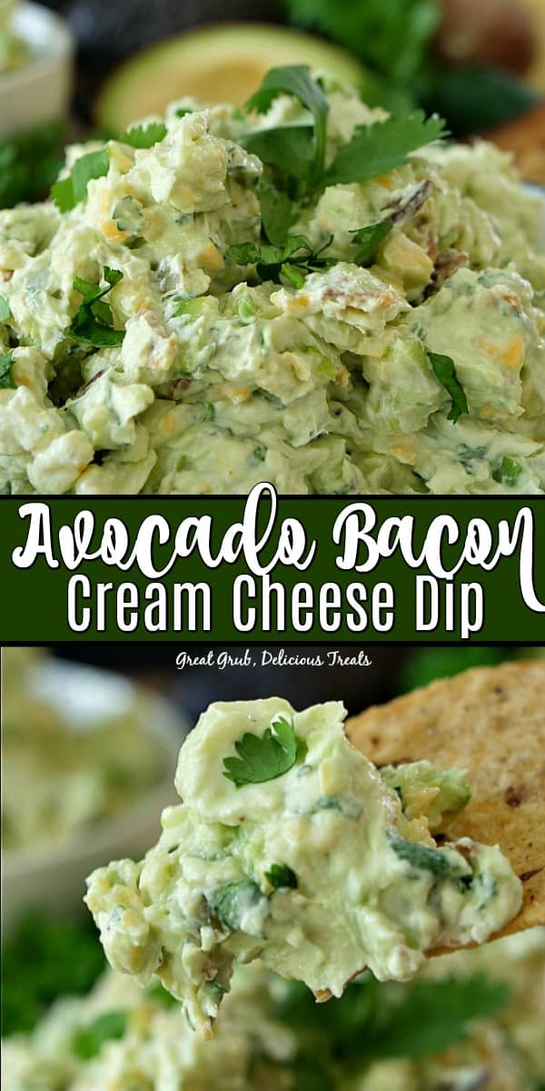 Avocado Bacon Cream Cheese Dip is the best avocado dip recipe that is so flavorful and delicious.