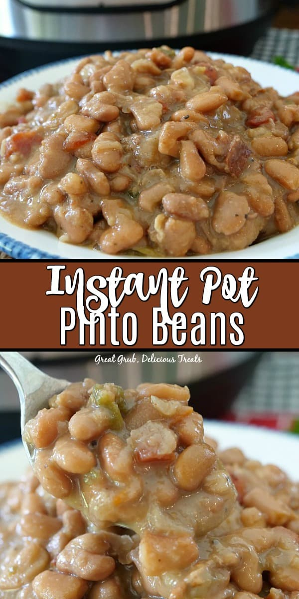 Instant Pot Pinto Beans are delicious and full of flavor.