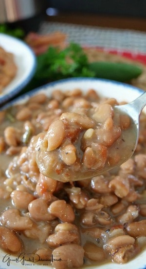 Instant Pot Pinto Beans are easy to make, do not need to soak prior to cooking.