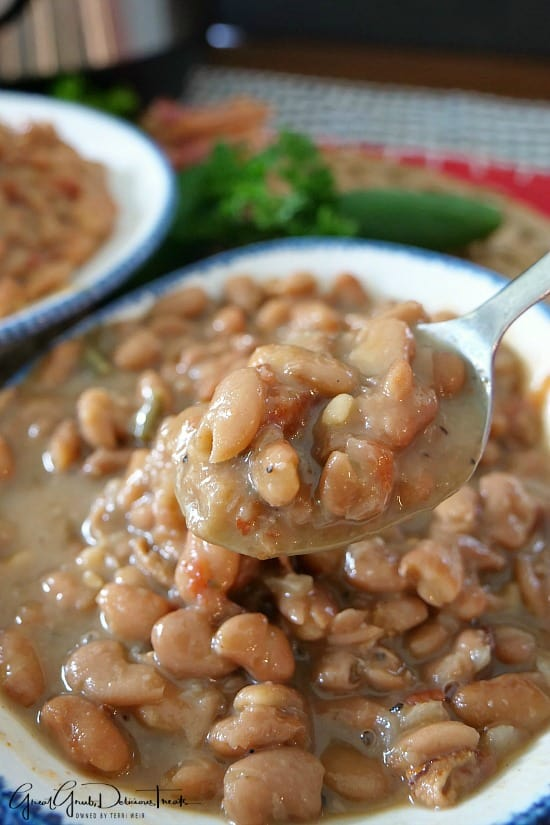 Instant Pot Pinto Beans are loaded with delicious flavor, seasoned just right and the beans taste amazing.