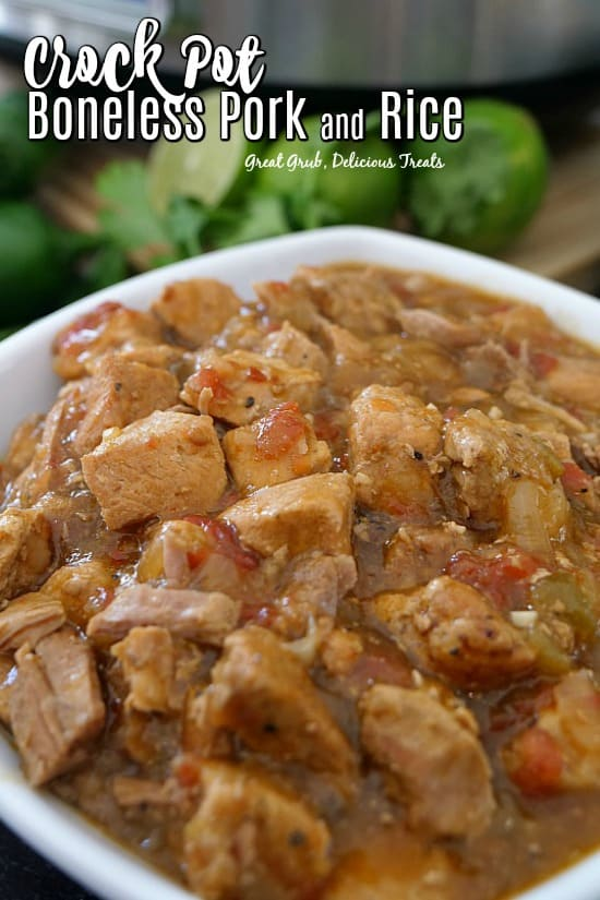 Crock Pot Boneless Pork and Rice is super tender, delicious, seasoned perfectly and served over rice.