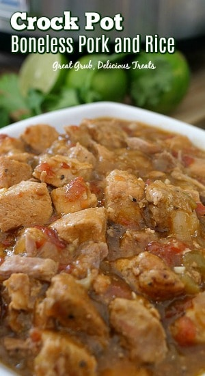 Crock Pot Boneless Pork and Rice is a super delicious crock pot meal, loaded with pork and seasoned perfectly.