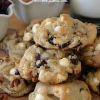 White Chocolate Cranberry Pecan Cookies are super thick, soft and chewy.