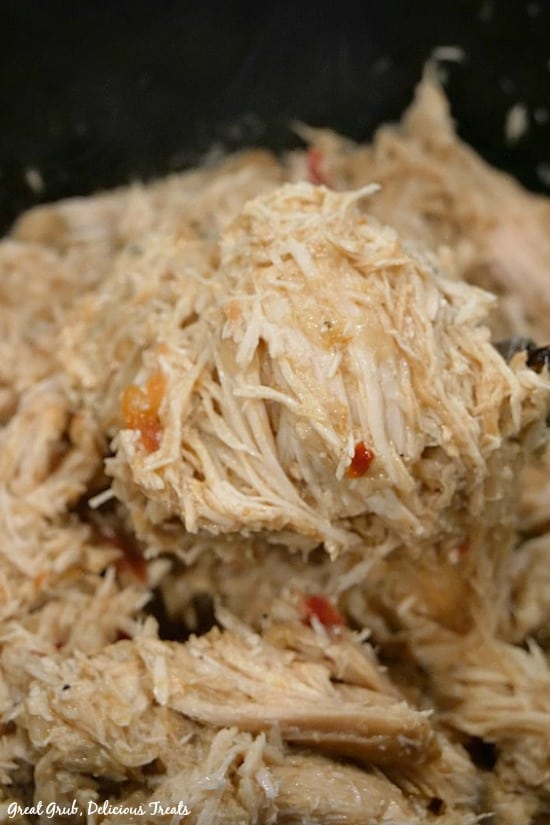 Crock Pot Spicy Chicken - shredded chicken in a crock pot with a spoonful of chicken.