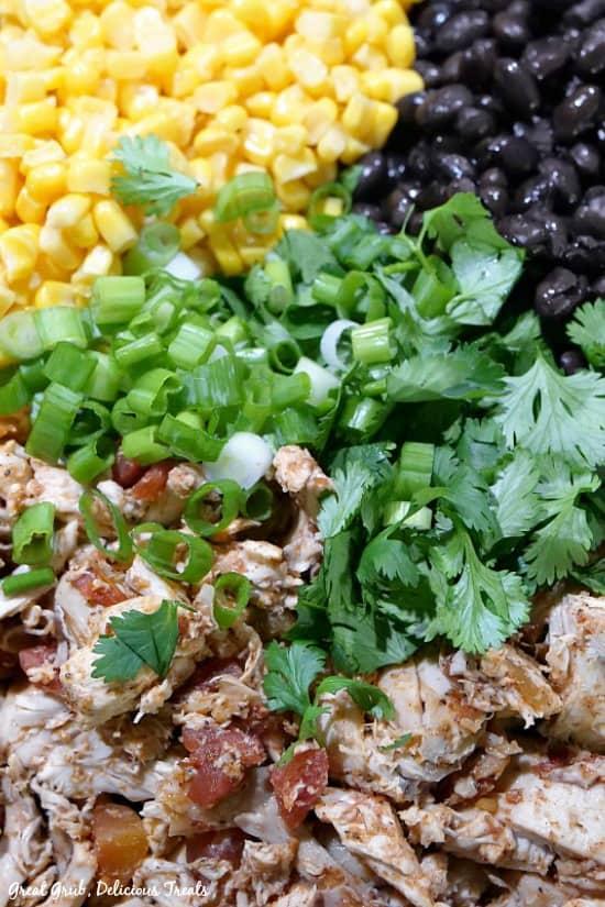 Southwest Chicken Pasta Salad - rotisserie chicken, corn, black beans, cilantro, green onions in a bowl