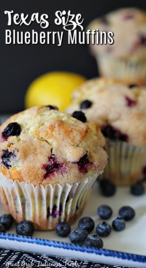 2 blueberry muffins on a white plate with blue trim, blueberries on the plate, a lemon and another muffin in the background.