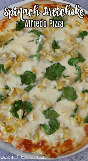 A close up photo of an entire spinach artichoke alfredo pizza on a pizza pan.