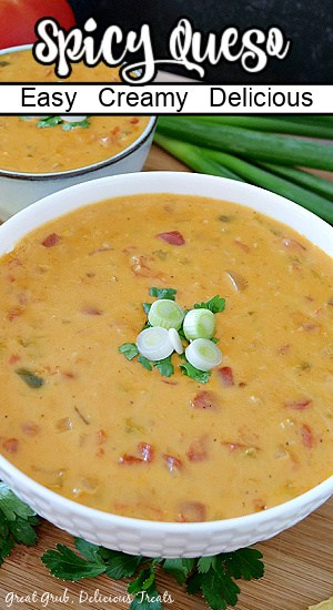 2 white bowls filled with spicy queso and the title of the recipe on top of the photo.