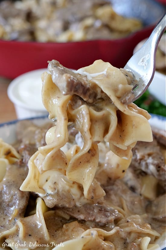 Beef Stroganoff in a white bowl with blue trim. A fork is holding a bite of the Beef Stroganoff, showcasing the creamy sauce and beef strips.