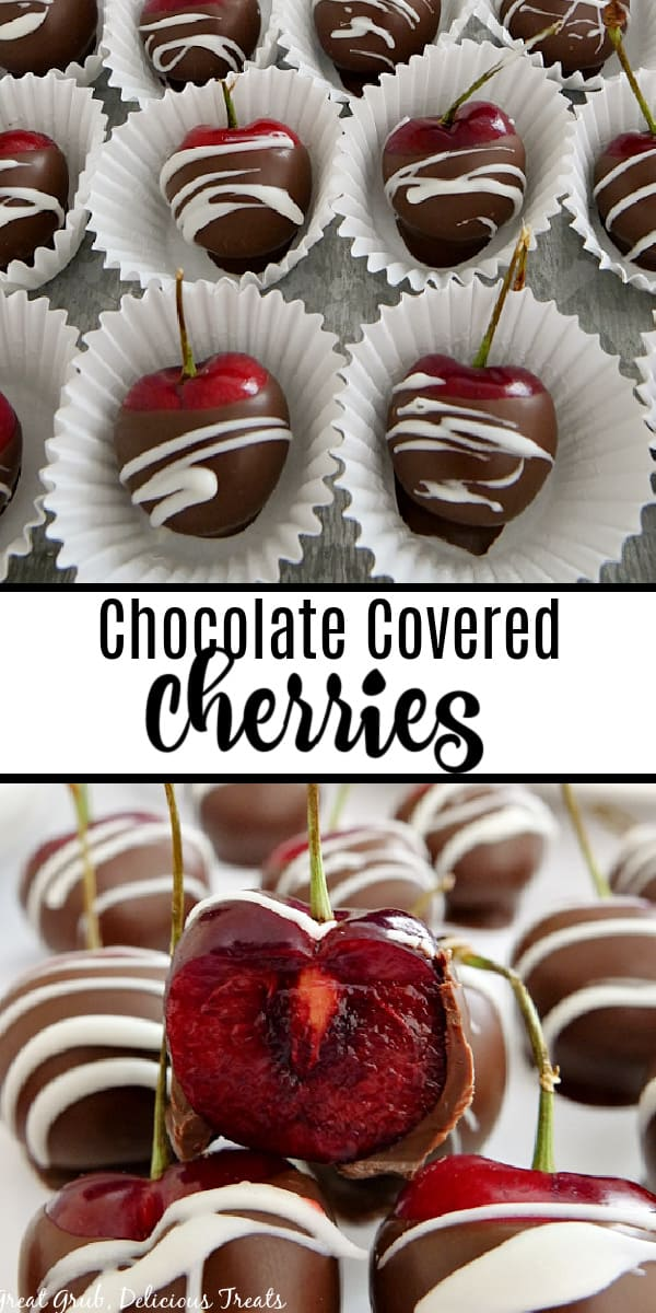 A two photo collage of chocolate covered cherries sitting in mini cupcake liners, sitting on a metal plate and another picture of a bite taken out of a cherry.