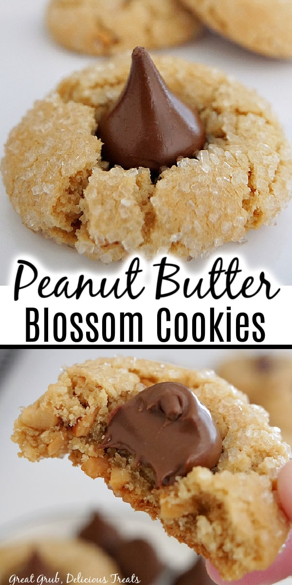A double collage photo of a single peanut butter blossom cookie and another photo of a cookie with a bite out of it, with the title of the recipe in between the two photos.