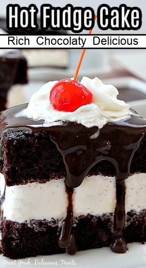 A piece of hot fudge cake with a vanilla ice cream center, drizzled in hot fudge, and topped with whipped cream and a cherry.