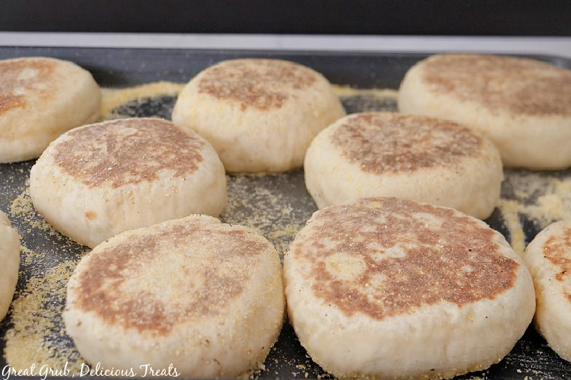 A baking sheet with English muffins on it, all sprinkled with cornmeal on top.